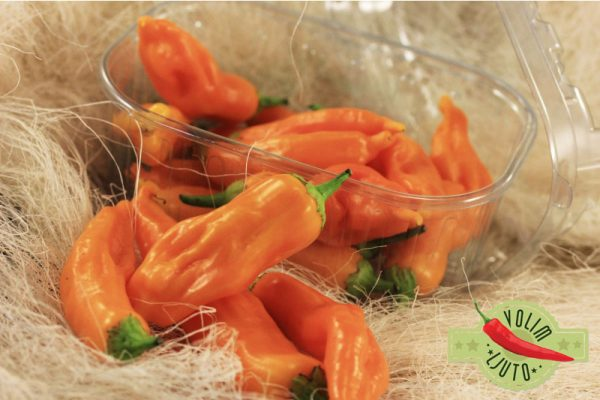Aji Golden - svježe chili papričice 7