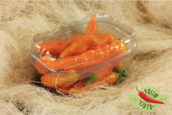 Aji Golden - svježe chili papričice 5