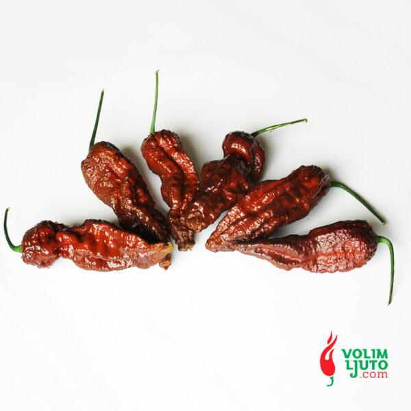 Bhut Jolokia Chocolate - svježe chili papričice 6