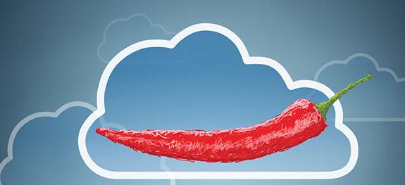 Uzgoj ljutih papričica u oblaku iliti Chili cloud 3