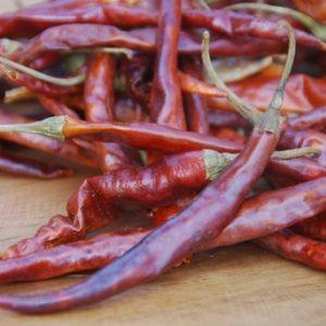 Cola de Rata sadnica chili papričice 6