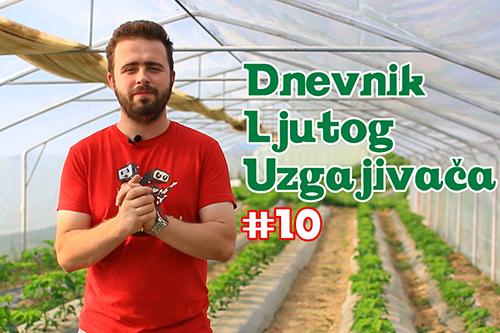 Dnevnik Ljutog Uzgajivača 10 - VolimLjuto.com