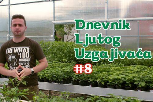 Dnevnik Ljutog Uzgajivača 8 - VolimLjuto.com