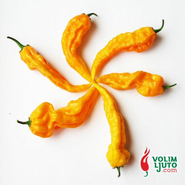 Fatalii - svježe chili papričice 5