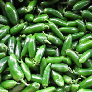 Jalapeno sadnica chili papričice 17