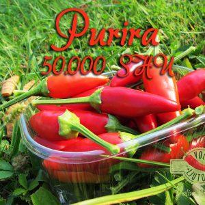 Purira - Svježe papričice 4