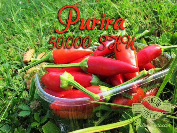 Purira - Svježe papričice 3