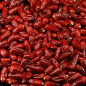 Thai Hot sadnica chili papričice 8