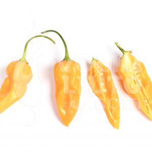 Bhut jolokia yellow - VolimLjuto.com