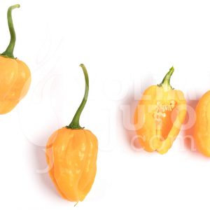 Scotch bonnet yellow - VolimLjuto.com