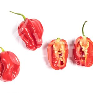Scotch bonnet red - VolimLjuto.com