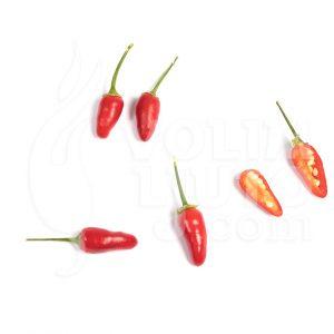 Thai hot - VolimLjuto.com