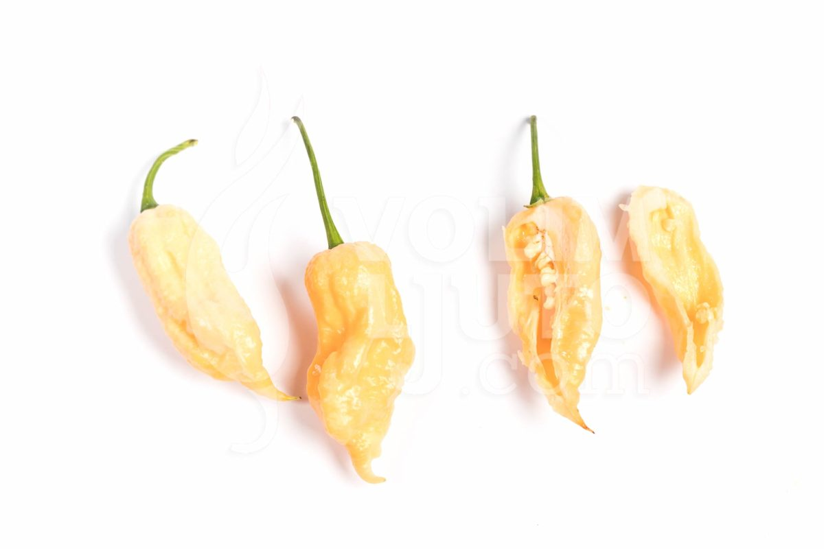 Trinidad Scorpion Peach - VolimLjuto.com