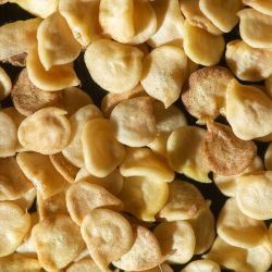 Sjemenke chili papričica - VolimLjuto.com