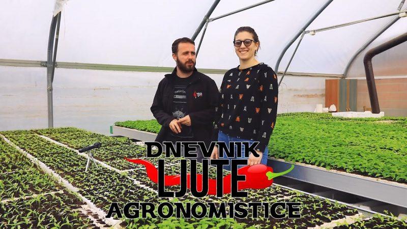 Dnevnik Ljute Agronomistice - VolimLjuto.com