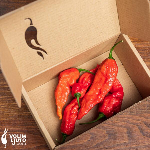 Fatalii Red - svježe papričice 1