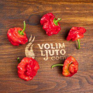 Volim Ljuto - Ljuti umaci, chili papričice, sjemenke chili papričica 6