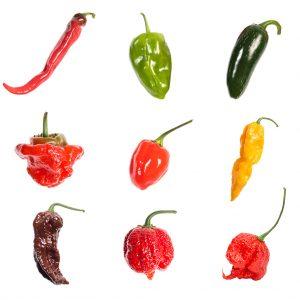 Volim Ljuto - Ljuti umaci, chili papričice, sjemenke chili papričica 4