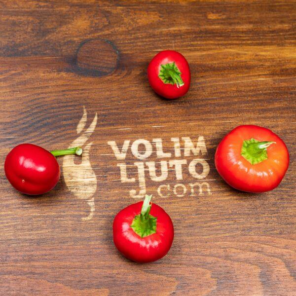 Devil's Lamb Heart sadnica chili papričice 4