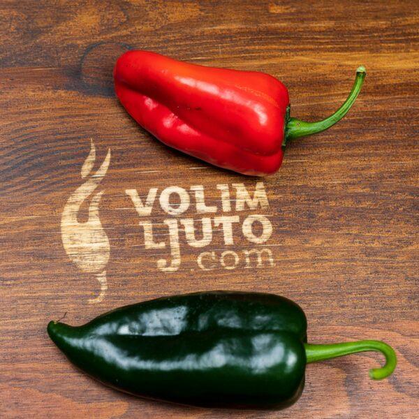 Poblano - Sjemenke chili papričica 2