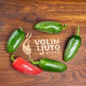 Jalapeno - svježe chili papričice 10
