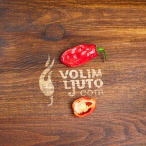 Habanero Red - svježe chili papričice 13