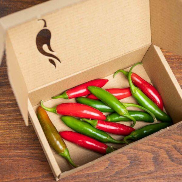 Serrano - svježe chili papričice 3