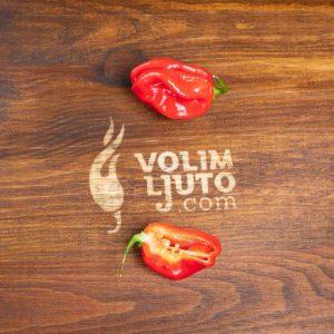 Red Savina Habanero - svježe chili papričice 11