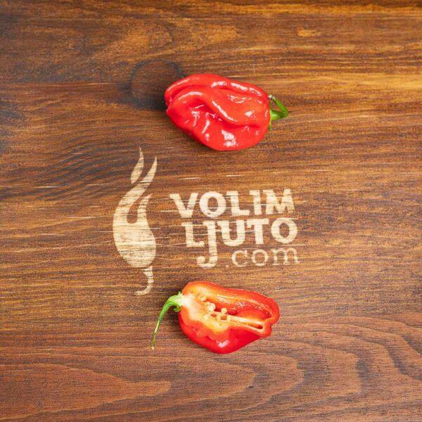 Red Savina Habanero - svježe chili papričice 7