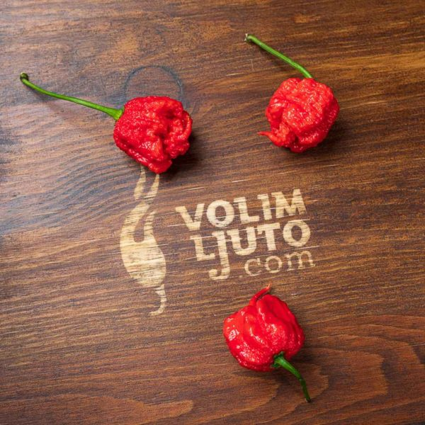 Carolina Reaper - svježe chili papričice 4