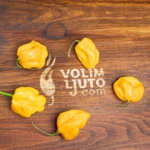 Habanero Yellow - svježe chili papričice 10