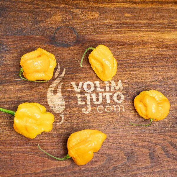Habanero Yellow - svježe chili papričice 6