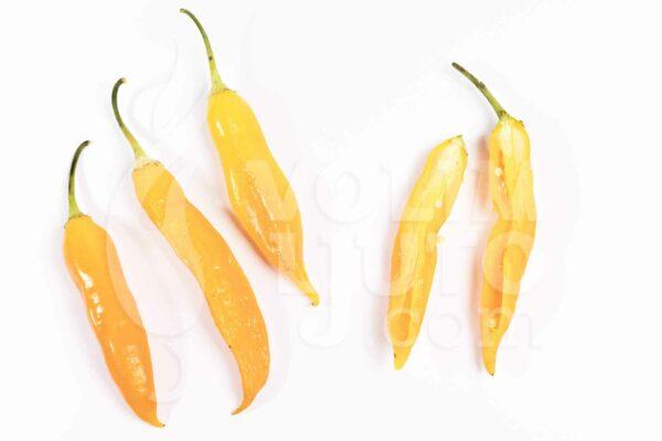 Aji Golden - svježe chili papričice 3