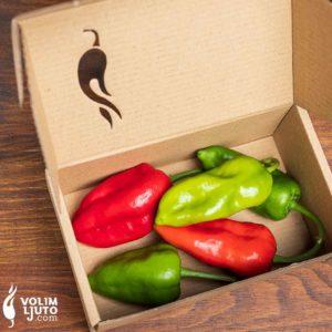 Svježe chili papričice - samo unutar sezone 2