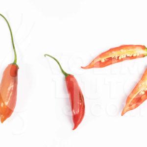Zalijevanje chili papričica - manje je više ili više je manje? 6