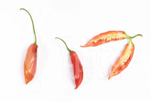 Aji Angelo - Sjemenke chili papričica 3