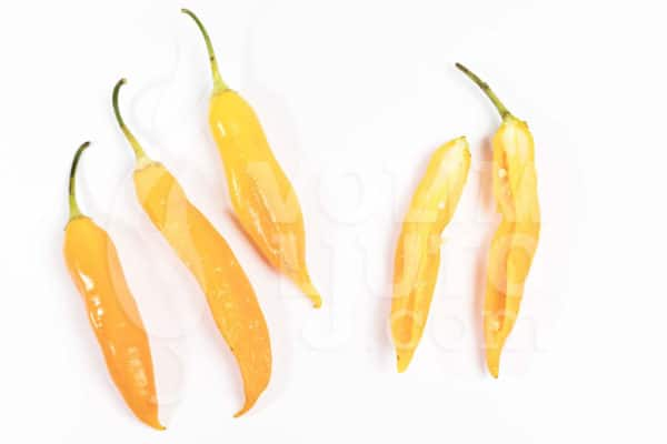 Aji Golden - Sjemenke chili papričica 3