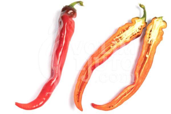 Hot Portugal - Sjemenke chili papričica 3