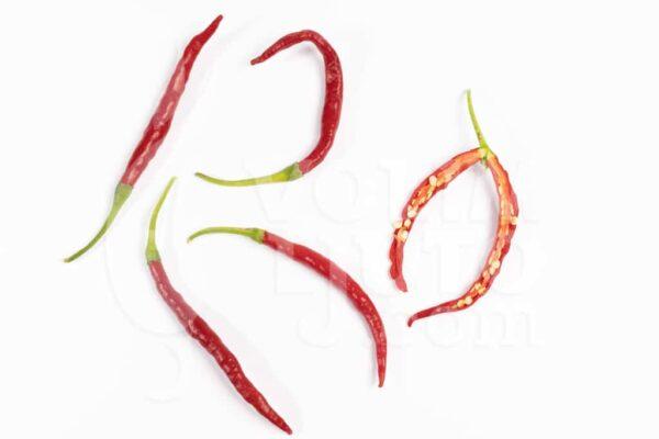 Cola de Rata - Sjemenke chili papričica 3