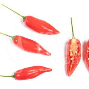 Sjemenke chili papričica - preko 50 sorti! 40