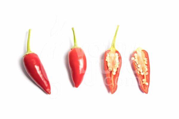 Purira - Sjemenke chili papričica 3