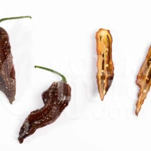 Zalijevanje chili papričica - manje je više ili više je manje? 3