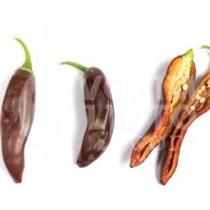 Sjemenke chili papričica - preko 50 sorti! 34