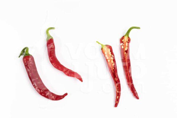 Cayenne - Sjemenke chili papričica 2