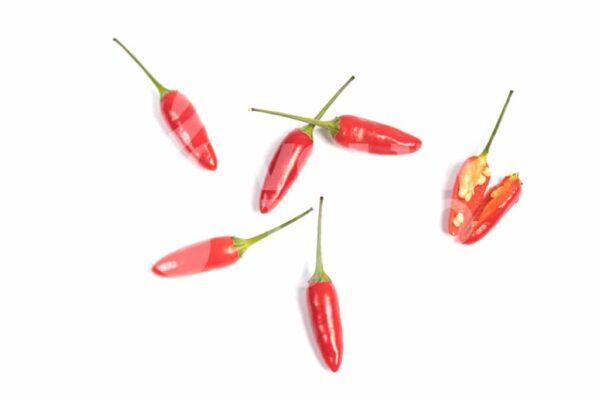 Siling Labuyo - Sjemenke chili papričica 2