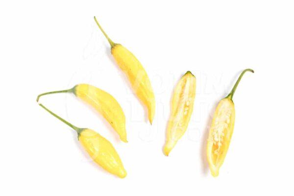 Aji Pineapple - Sjemenke chili papričica 3