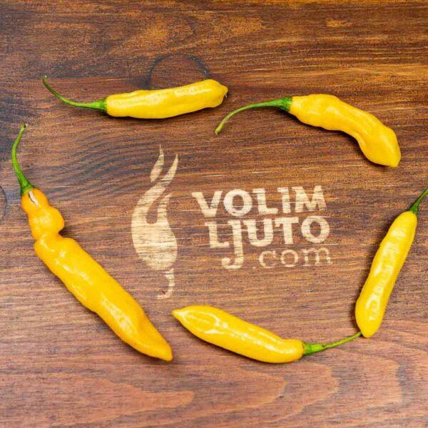 Habanero Lemon - Sjemenke chili papričica 3