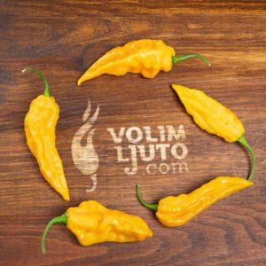 Fatalii - svježe chili papričice 10