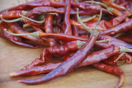 Cola de Rata sadnica chili papričice 5