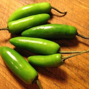 Serrano sadnica chili papričice 16
